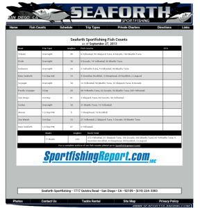 2013-09-27 Seaforth Fish Counts
